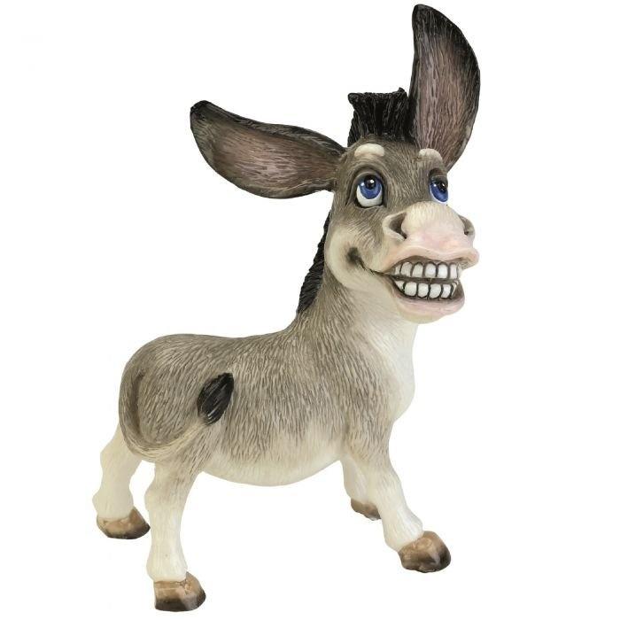 Wonkey - Donkey