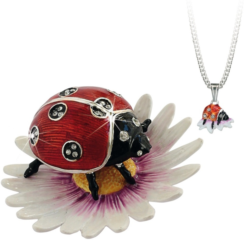 Hidden Treasures - Ladybird