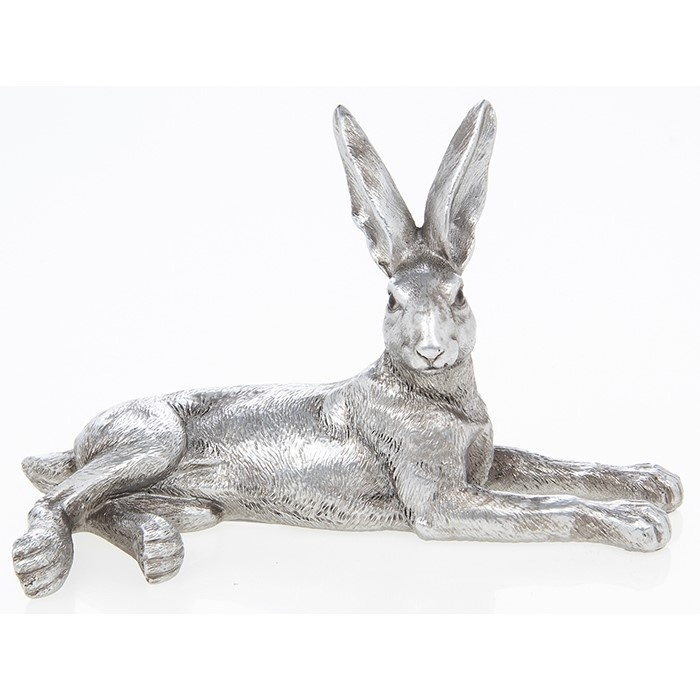 Reflections - Silver Hare Lazing
