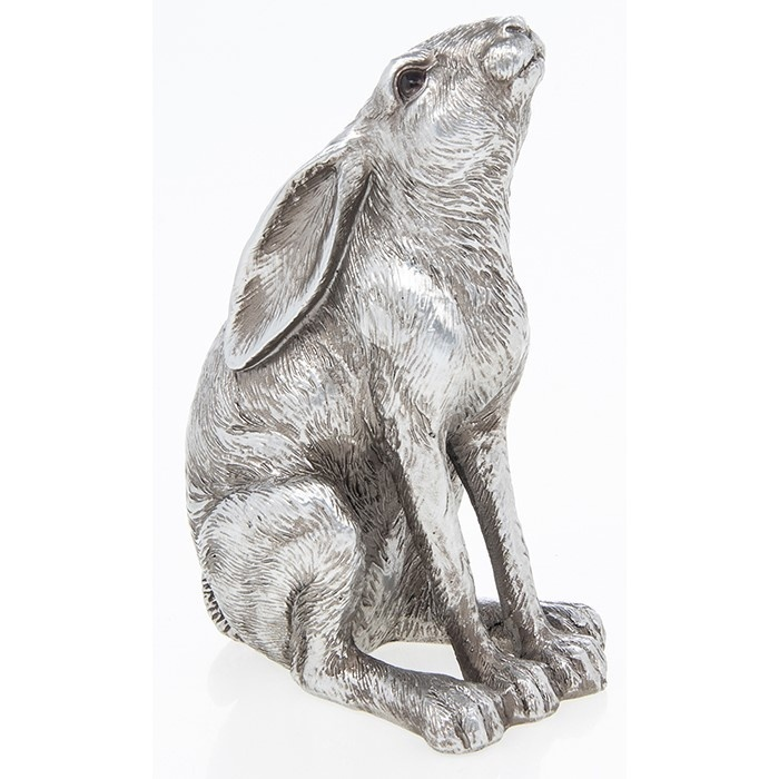 Reflections - Silver Hare Gazing